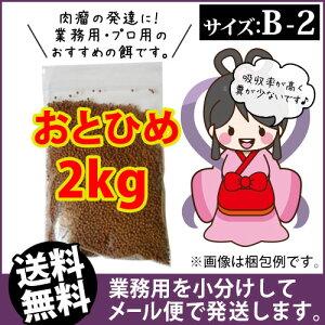 (送料無料※メール便kkg)日清丸紅飼料おとひめB...