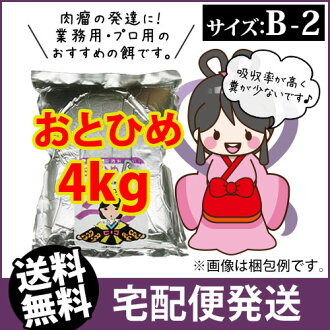 (* 交货) otohime B2 (粒子) 4 公斤的孔雀鱼鱼苗鳉、 对和大米的诱饵鱼饵 (金鱼小屋-福冈)
