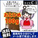 Otohime c1 00100