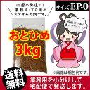 Otohime-ep0-03000
