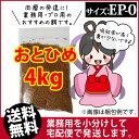 Otohime-ep0-04000