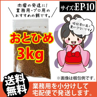 (※郵寄)otohime EP10(沉降性)3kg/鯉魚的飯、熱帶魚的飼料、arowana的飼料(金魚小房間-希-福岡)