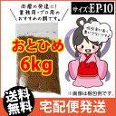 (送料無料※宅配)日清丸紅飼料おとひめEP10(10~8.0mm)6kg/沈降性 コイのごはん 熱帯魚の餌 アロワナのエサ(金魚小屋-…