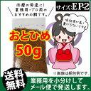 Otohime-ep2-00050
