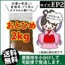 Otohime-ep2-02000