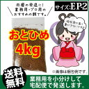 Otohime-ep2-04000