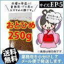 Otohime-ep5-00250