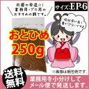 Otohime ep6 00250