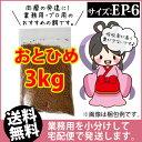 Otohime-ep6-03000