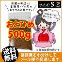Otohime-s2-00500