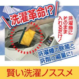 『賢い洗濯ノススメ』洗濯機に入れるだけ!洗濯槽の除菌と洗剤の減量に![PC動画付]【RCP】