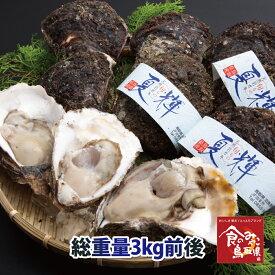 鳥取県産 ブランド天然岩がき 夏輝 約3kg詰め 6個〜10個程度(岩ガキ/岩牡蠣/カキ)送料無料 生食用 牡蠣