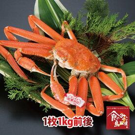 タグ付き特上松葉ガニ(ボイル)特大サイズ1枚1kg前後 送料無料(ズワイガニ 姿 ずわい蟹 ずわいがに かに カニ 蟹)