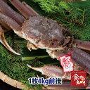タグ付き特上松葉ガニ(活)特大サイズ1枚1kg前後 送料無料(ずわい蟹 ずわいがに ズワイガニ かに カニ 蟹 生 松葉がに 姿 刺身)