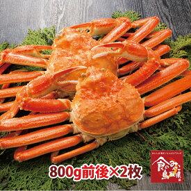 訳あり松葉ガニ(ボイル)大サイズ2枚で1.6kg前後 送料無料 1落ち程度(ズワイガニ 姿 ずわい蟹 ずわいがに かに カニ 蟹)