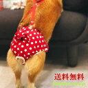 犬用 サニタリーパンツ マナーパンツ 生理パンツ おむつカバー 女の子用 発情期用 メス 生理用 リボン サスペンダー …