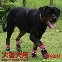 予約商品 大型犬用ゴム底付き防水ソックスシューズ(XXL-XXXLサイズ)(犬用靴下1足分4個セット)【犬靴下/ソックス/…
