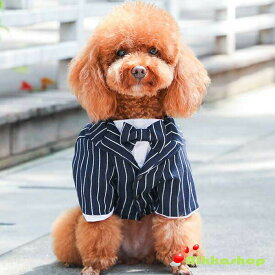 犬服 ドッグウェア タキシード ストライプ 新郎 リボン ネックレス付き (S-XLサイズ)小型犬 中型犬 結婚式 ウェディング お祝い 記念パーティー 制服 メール便送料無料