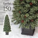 クリスマスツリー おしゃれ 北欧 150cm 高級 ドイツトウヒツリー オーナメント 飾り セット なし ツリー ヌードツリー…