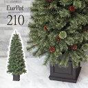 クリスマスツリー おしゃれ 北欧 210cm 高級 ドイツトウヒツリー オーナメント 飾り セット なし ツリー ヌードツリー…