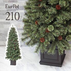 クリスマスツリー おしゃれ 北欧 210cm 高級 ドイツトウヒツリー オーナメントセット なし ツリー ヌードツリー スリム ornament Xmas tree Eurpot