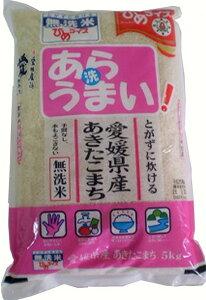 新米 無洗米 あらうまい あきたこまち 10kg(5kg×2袋) ≪令和2年愛媛県産精米≫