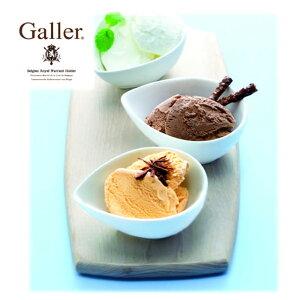 アイス ギフト プレゼント 詰め合わせ セット ガレープレミアムアイスクリームセット(V5905-304A)(C7278-598T)(EG-GL40) 送料無料 ギフト お返し 内祝い