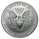 新品未使用 2000 アメリカ イーグル銀貨1オンス(41mmクリアーケース付き)
