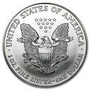 新品未使用 1999 アメリカ イーグル銀貨1オンス(41mmクリアーケース付き)