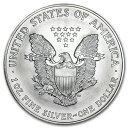 新品未使用 1996 アメリカ イーグル銀貨1オンス(41mmクリアーケース付き)