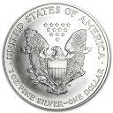新品未使用 1995 アメリカ イーグル銀貨1オンス(41mmクリアーケース付き)