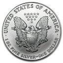 新品未使用 1993 アメリカ イーグル銀貨1オンス(41mmクリアーケース付き)