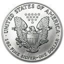 新品未使用 1991 アメリカ イーグル銀貨1オンス(41mmクリアーケース付き)