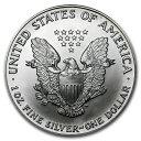 新品未使用 1990 アメリカ イーグル銀貨1オンス(41mmクリアーケース付き)