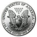 新品未使用 1989 アメリカ イーグル銀貨1オンス(41mmクリアーケース付き)