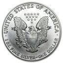 新品未使用 1988 アメリカ イーグル銀貨1オンス(41mmクリアーケース付き)