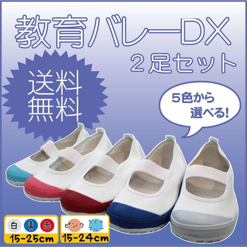 【生活応援価格DX!】上履き 教育シューズ 教育バレーDX 2足セット