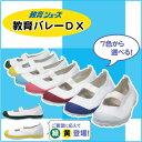 教育シューズ 教育バレーDX 白/青/赤/ピンクライトブルー/緑/黄