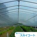 農PO メーター単位切売り タキロンシーアイ スカイコート5 幅 540cm×厚み0.10mm