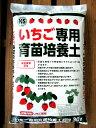 【新商品】【送料無料】ダークピートモス入り いちご専用 育苗培養土 30L