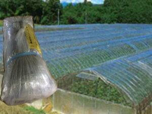 農業用ビニール 中接 屋根 透明・梨地(曇り)厚み0.1mmX幅540cmX長さ13mX重量9.5kg