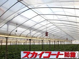 農PO メーター単位切売り スカイコート防霧 幅540cm×厚み0.05mm