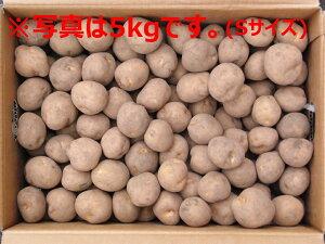 北海道大樹町産 じゃがいも 種芋 男爵 10kg×2箱セット