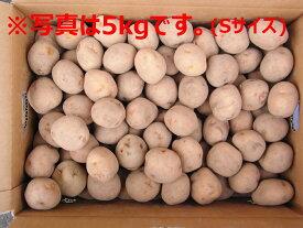 北海道大樹町産 じゃがいも 種芋 キタアカリ 10Kg