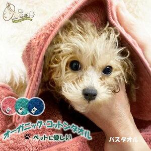 ペットタオル エアーかおる バスタオル ペット用品 犬 猫 オーガニックコットン お風呂 吸水 速乾