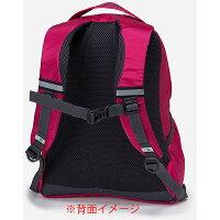 karrimor(カリマー)ステップ12/アイス56948569ブルーリュックバックパックレディースバッグデイパック女性用デイパックアウトドアギア