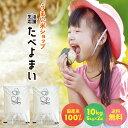【雑穀プレゼント中】お米 白米 10kg (5kg×2袋) 送料無料 【令和2年産】たべよまい 米 ブレンド米 農家直送 家庭応援…