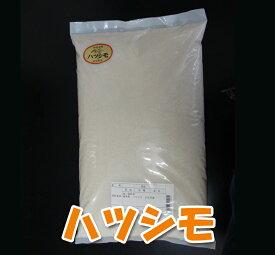 【送料無料】ハツシモ(はつしも) 米5kg 岐阜県産 元年産 玄米/分づき/精米無料 お米職人が厳選