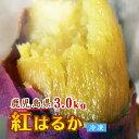 ※蜜いも 送料無料 満腹 紅はるか 冷凍焼き芋【鹿児島産紅はるか 3.0kg】焼き芋 電子レンジ 蜜芋 冷凍 簡単 おいもや…