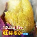 ※送料無料 蜜いも 紅はるか 大満足 冷凍焼き芋【鹿児島産紅はるか 4.0kg】焼き芋 電子レンジ 蜜芋 冷凍 簡単 おいも…